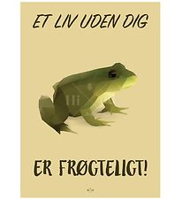 Hipd Poster - 50x70 - Frog