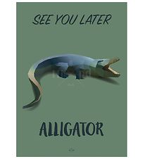 Hipd Poster - A4 - Alligator
