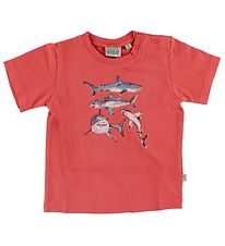 Wheat T-shirt - Red w. Sharks