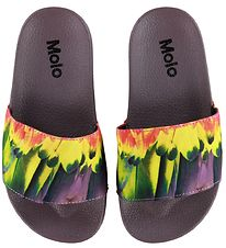 Molo Beach Sandals - Zhappy - Amazon Parrots