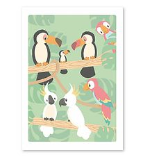 Studio Circus Poster - 50x70 - Birds In Rainforest