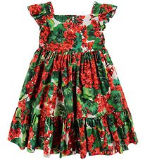 Dolce & Gabbana Dress - Portofino - Red/Green Flowers