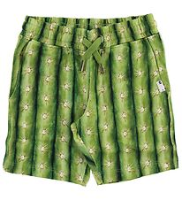 Molo Sweat Shorts - Arnt - Cactus