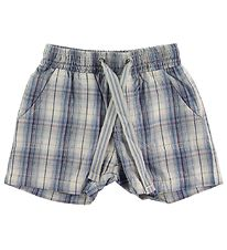 Wheat Shorts - Aaron - Blue