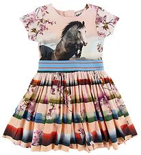 Molo Dress - Candy - Jumping Horse