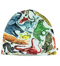 Molo Hat - Ned - Colourful Animals