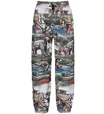 Molo Rain Pants - Waits - Ancient Animals