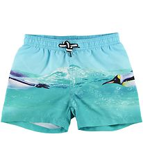 Molo Swim Trunks - UV50+ - Niko - The Penguin