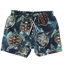 Molo Swim Trunks - Niko - Sea Turtles