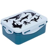 Petit Monkey Lunchbox - Sea Animals - Blue
