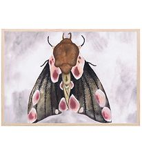 Thats Mine Poster - 21x30 - A Moth's Beauty