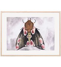 Thats Mine Poster - 30x40 - A Moth's Beauty