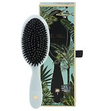 Fan Palm Hairbrush - Medium - Maldives